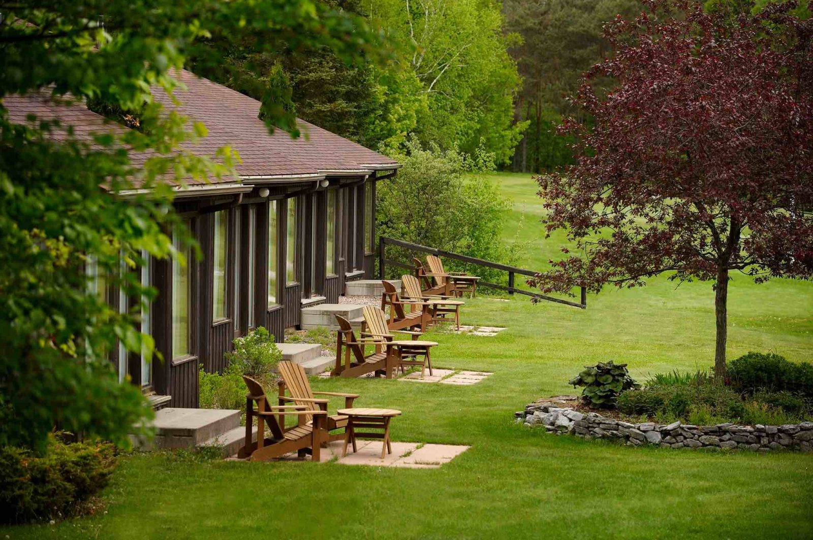 Pine Stone Resort showing cabins and Muskoka chairs in summer