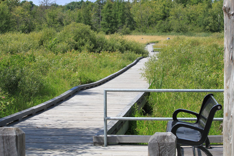 Visiting Minden Boardwalk with park bench fun things to do in Minden